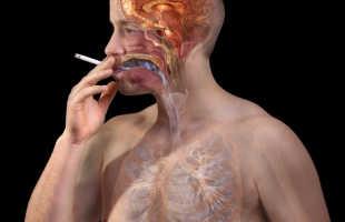 В чем опасность никотина для нервной системы человека