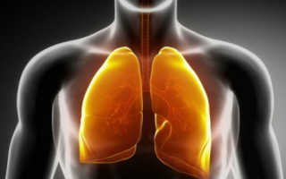 Как быстро вывести никотин из организма