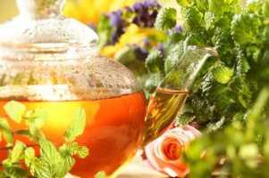 Полезные свойства монастырского чая от курения